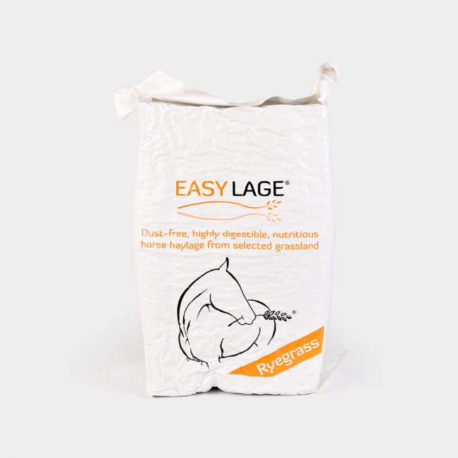 Easy Lage Arancione Ryegrass - Porrini Franco