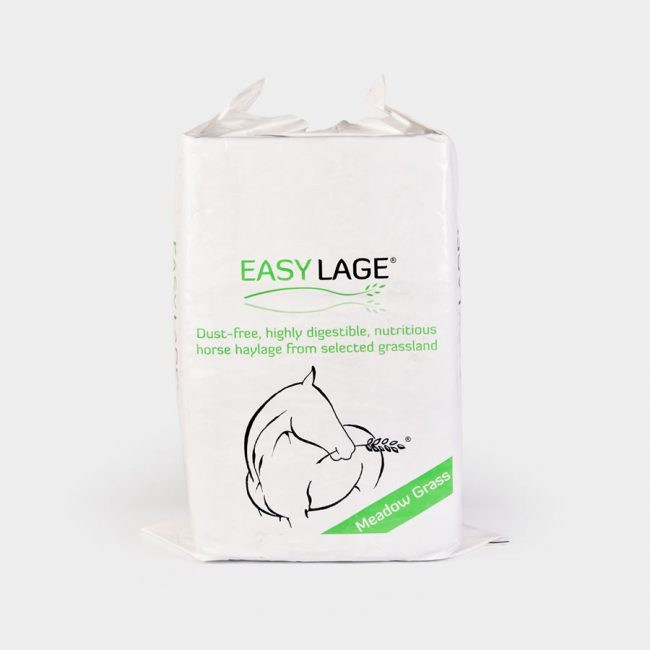 Easy Lage Verde Meadow Grass - Porrini Franco